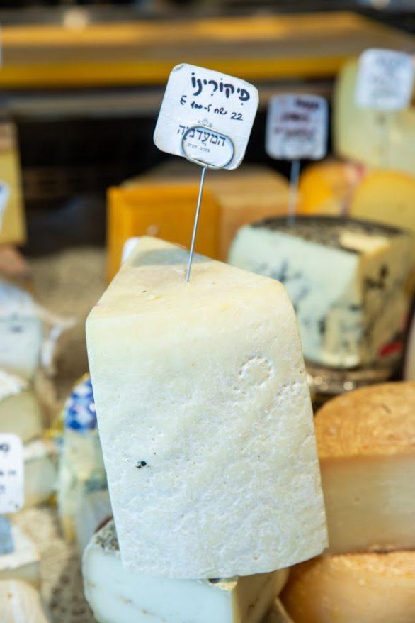 גבינת פיקורינו